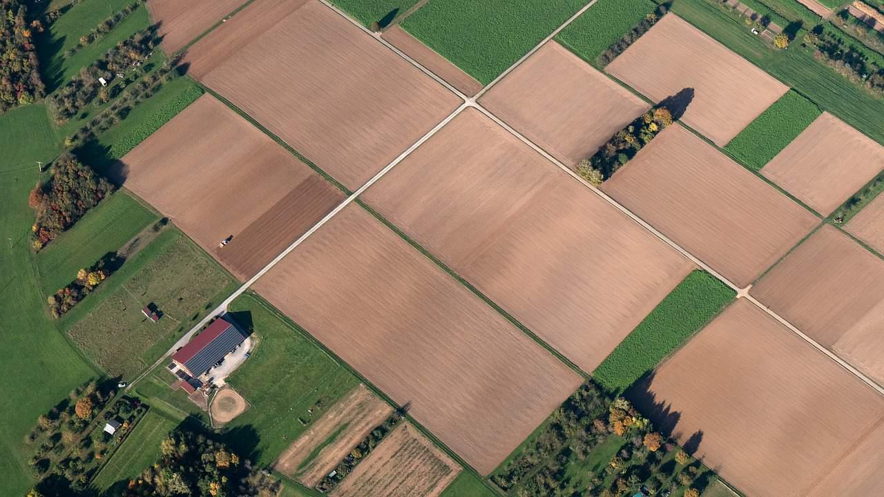 שדה חקלאי